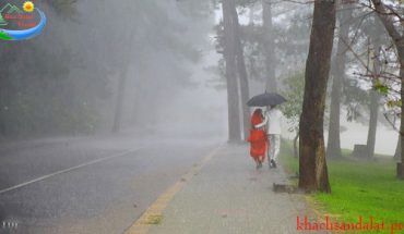 Đà Lạt tình yêu cơn mưa bất chợt