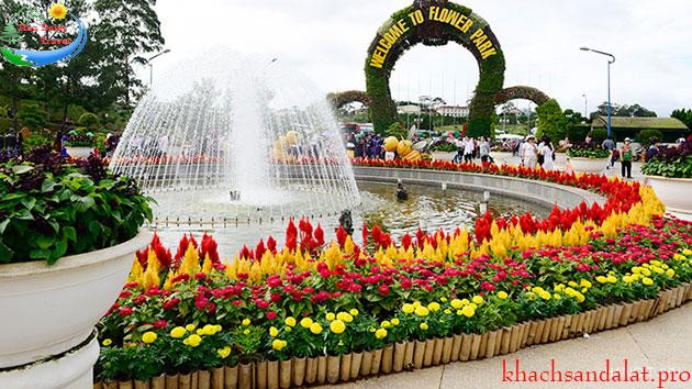 Tour xe máy tự chọn điểm ở Đà Lạt