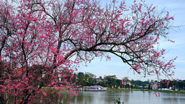 Hồ Xuân Hương Đà Lạt