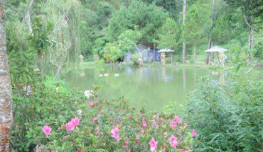 Ma Rừng lữ quán (Lâm Đồng) - Lãng mạn chốn hoang sơ