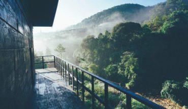 Check-in homestay hoang sơ giữa rừng 'không tốn một xu' ở Đà Lạt