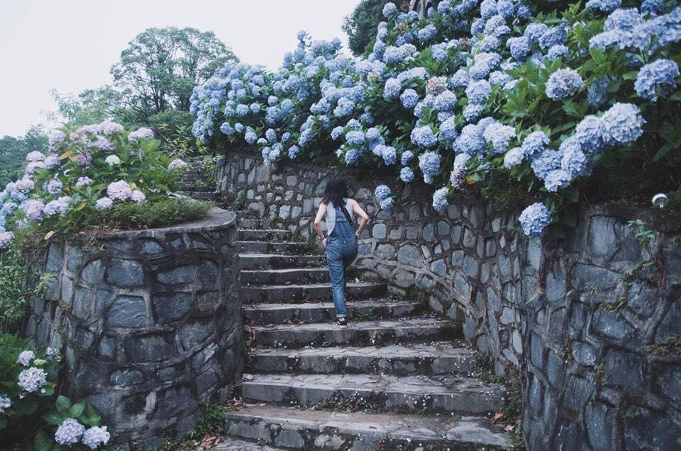 10 lý do chọn Đà Lạt là nơi nghỉ dưỡng cho gia đình