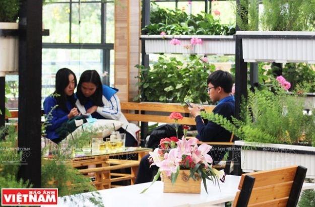 """Du lịch nông nghiệp trải nghiệm mới ở Đà Lạt """" Chiếc Hộp Xanh"""""""