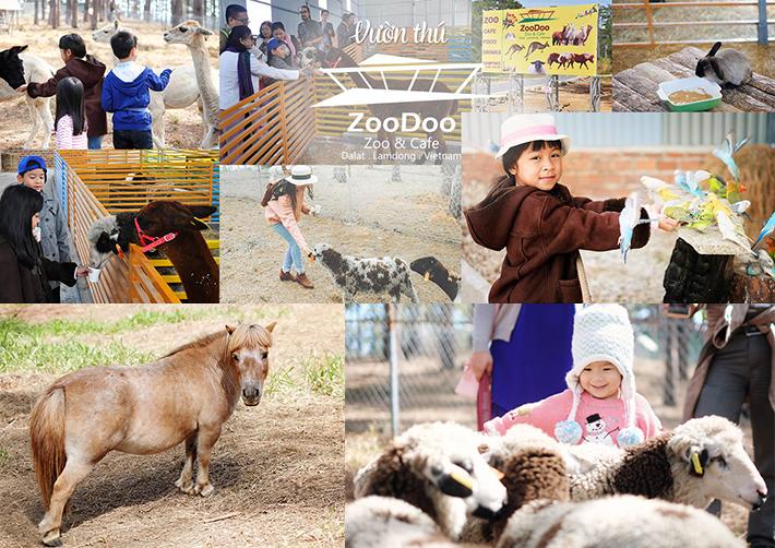 tour sở thú zoodoo đà lạt