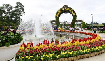 vườn hoa thành phố tại đà lạt