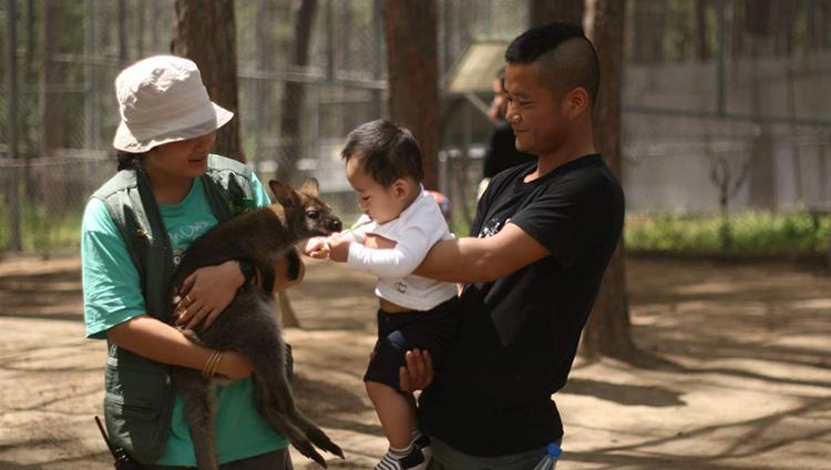 hình ảnh sở thú zoodoo đà lạt