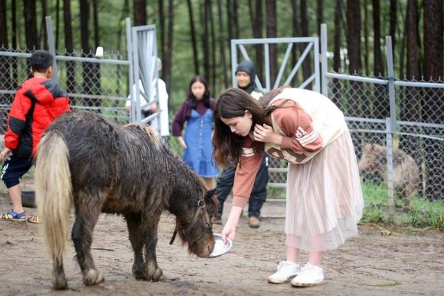 sở thú zoodoo đà lạt review