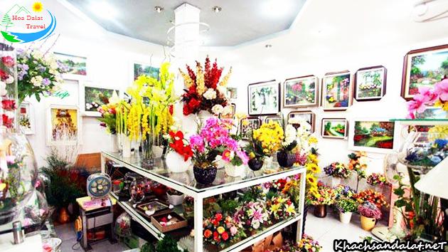 siêu thị rừng hoa khô