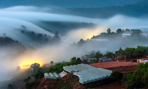 săn mây ở trại mát Đà Lạt