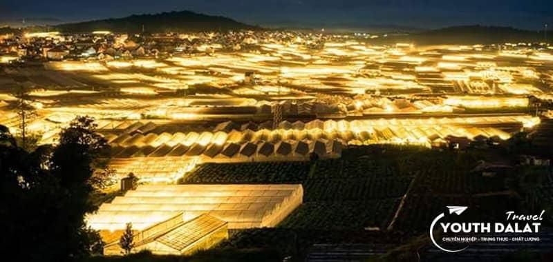 làng hoa Vạn Thành về đêm