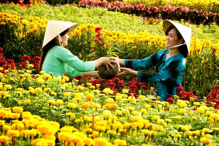 lịch sử láng hoa Vạn Thành