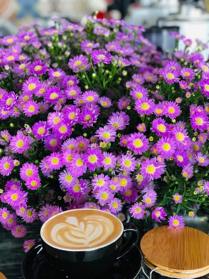 Thúy Thuận coffee