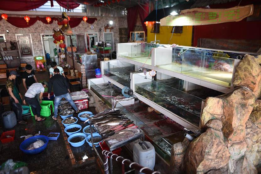 hải sản tươi sống Đà Lạt