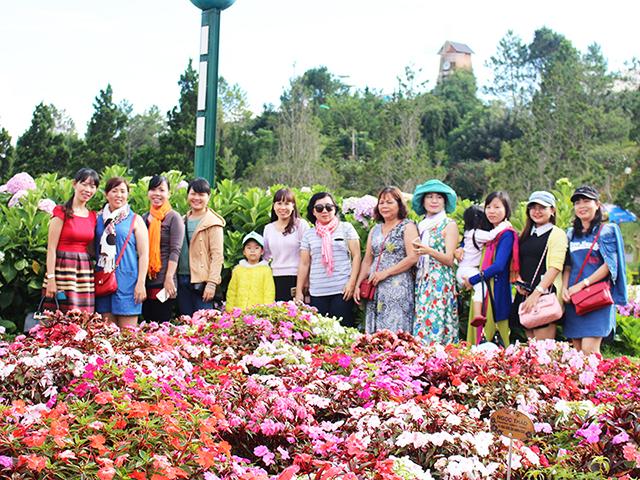 tour Đà Lạt 1 ngày Hoa DaLat Travel