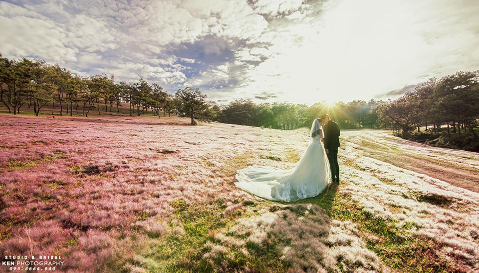 Chụp hình cưới ở đồi cỏ hồng