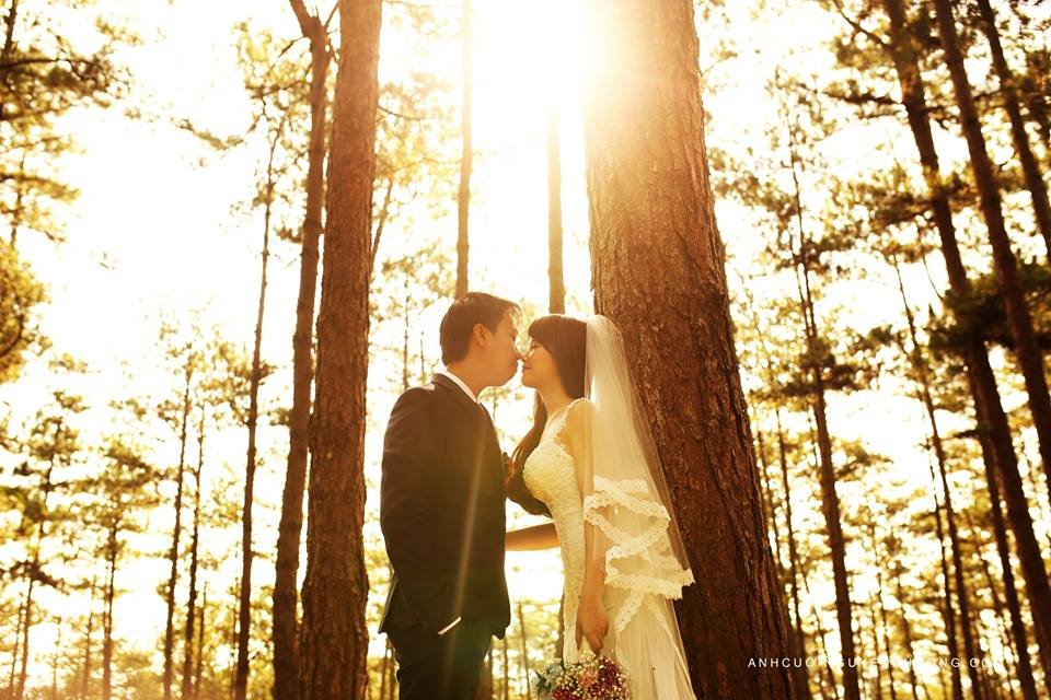 Địa điểm chụp hình cưới Đà Lạt