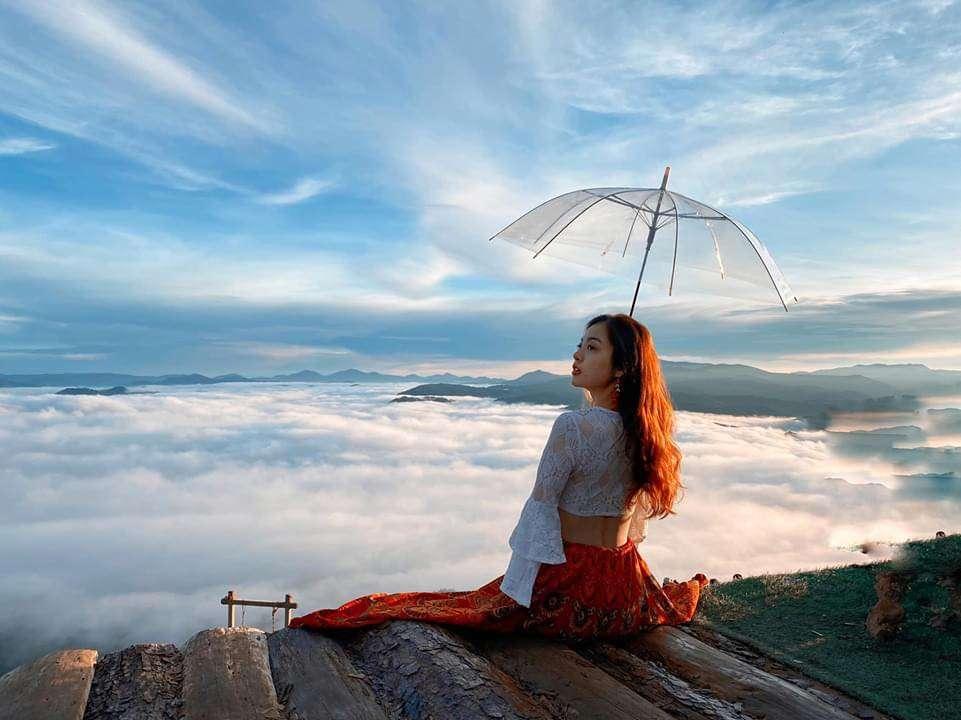 Đặt tour săn mây Đà Lạt